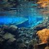 eind-van-de-blue-lagoon