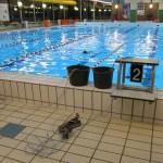 Elastiek-zwemmen