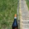 dsc01655_fles-aan-de-dijk-2