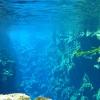 begin-van-de-blue-lagoon